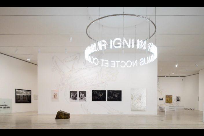 Museo Jumex   In Girum Imus Nocte Et Consumimur Igni